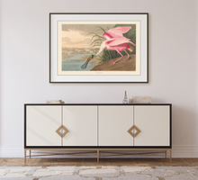 Load image into Gallery viewer, John James Audubon Museum Edition, Roseate Spoonbill
