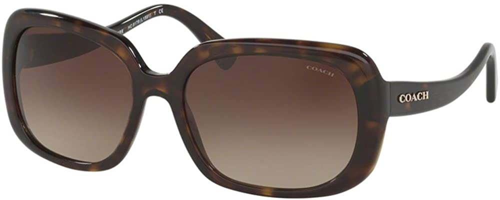 Coach Sunglasses HC8178 532411 (Condition: Minor scratch on lens)