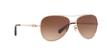 Load image into Gallery viewer, Coach Sunglasses HC7074 931013