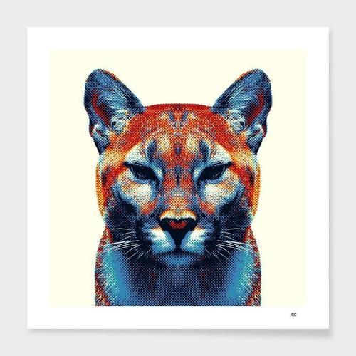 Puma - Colorful Animals  Frame