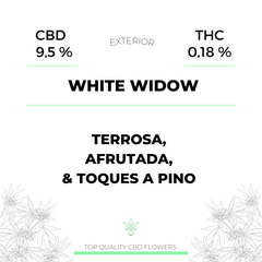White Widow ( CBD exterior )