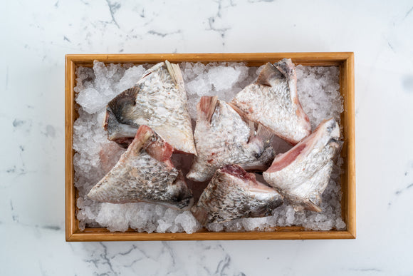 Frozen Barramundi Collar