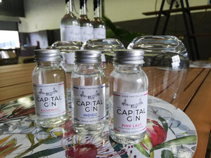 The Capital Gin Tasting