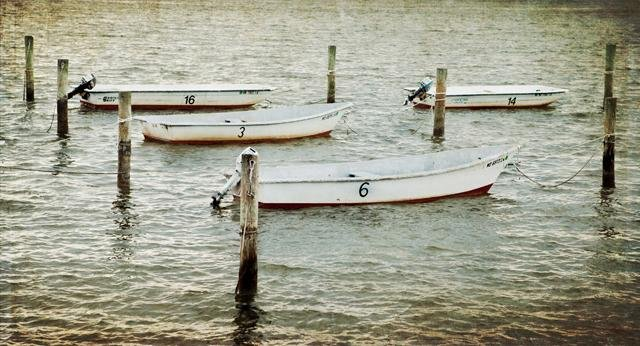 Kat Warren : Skiffs - N3CreativeShop