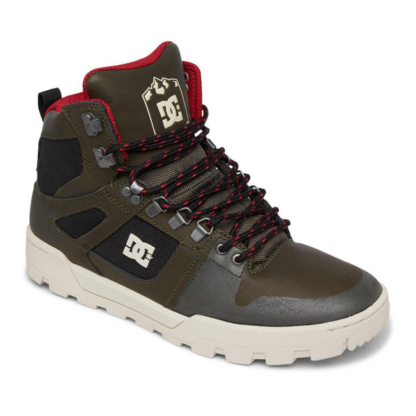 DC Pure High Top 2021 Men's Boot