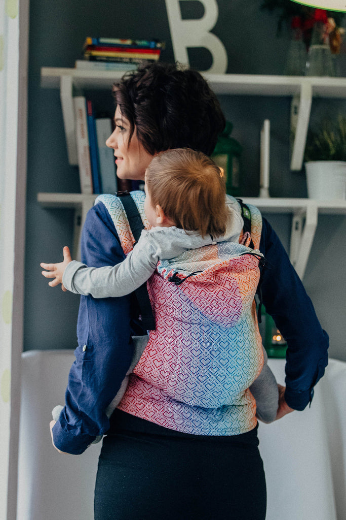 Lenny Lamb Big Love Rainbow Ergonomic Full Buckle Carrier