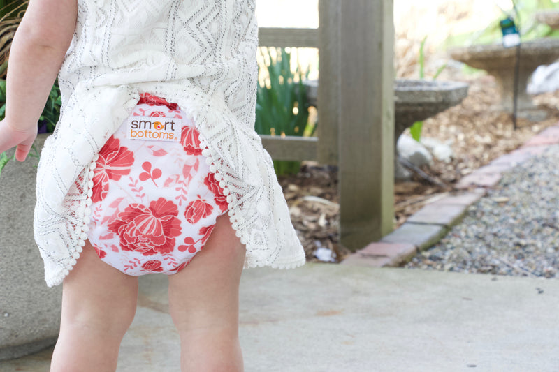 Smart Bottoms 3.1 All in One AIO Cloth Diaper Stella