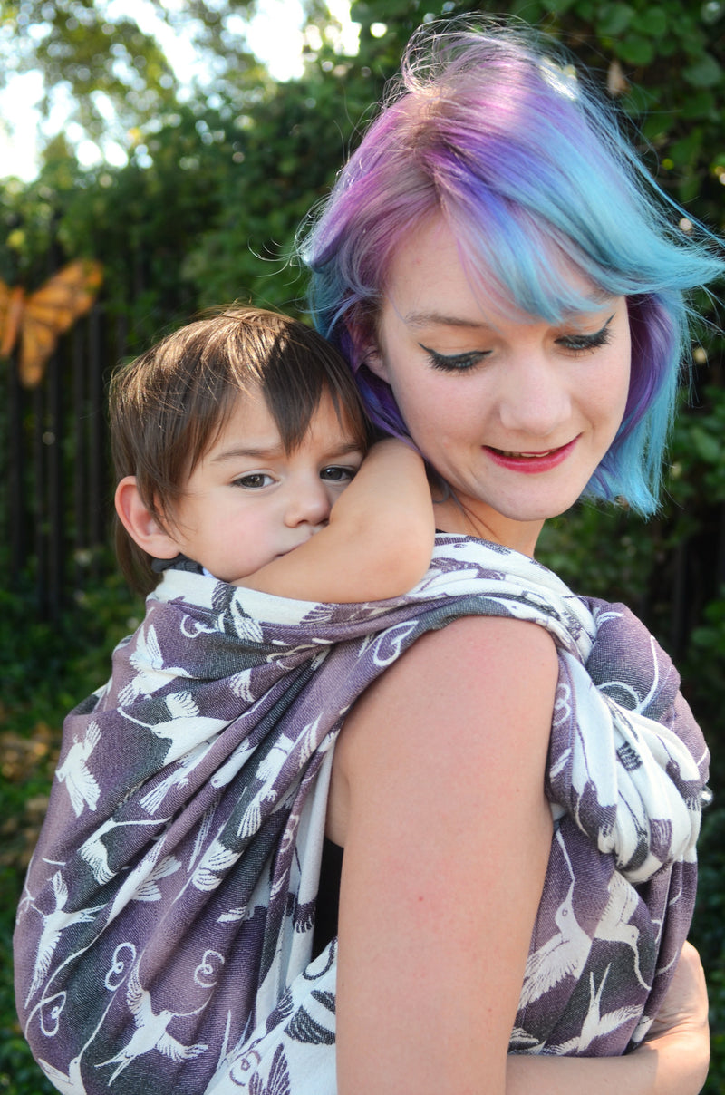 Smitten with Wovens Nimh - Brisby Made in the US baby carrier