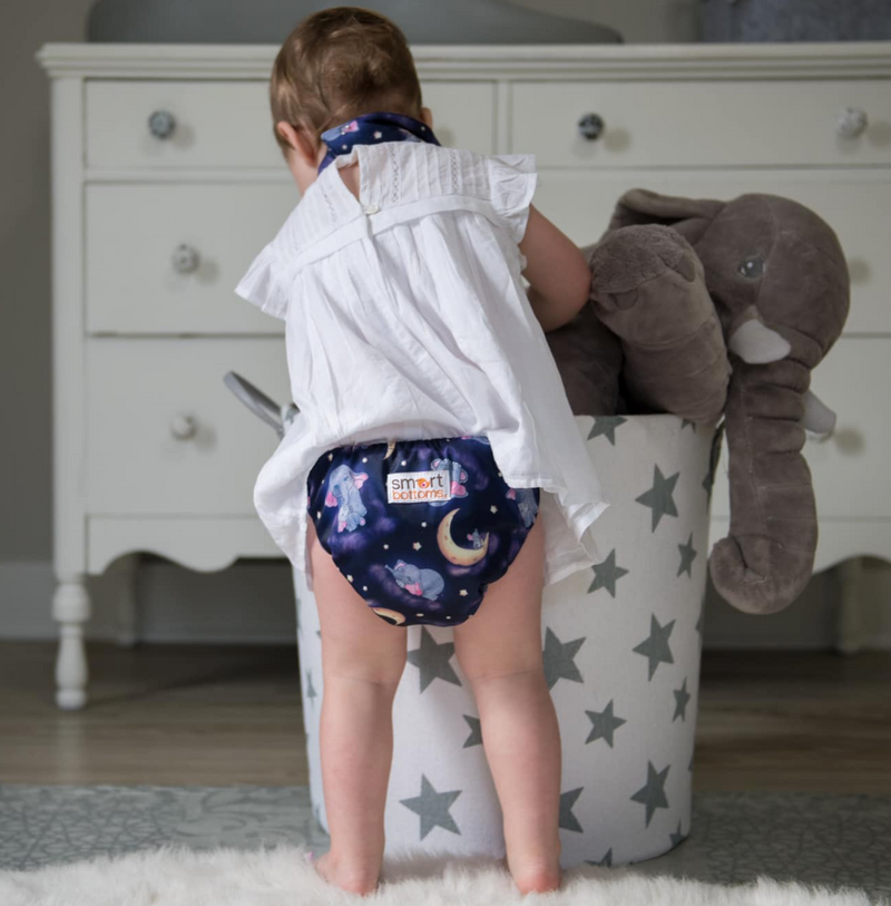 Smart Bottoms 3.1 All in One AIO Cloth Diaper Baby of Mine