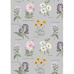 REDUCED - Botanical Flowers on Light Grey