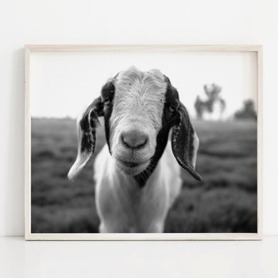 Happy Goat- Digital Printable Wall Art