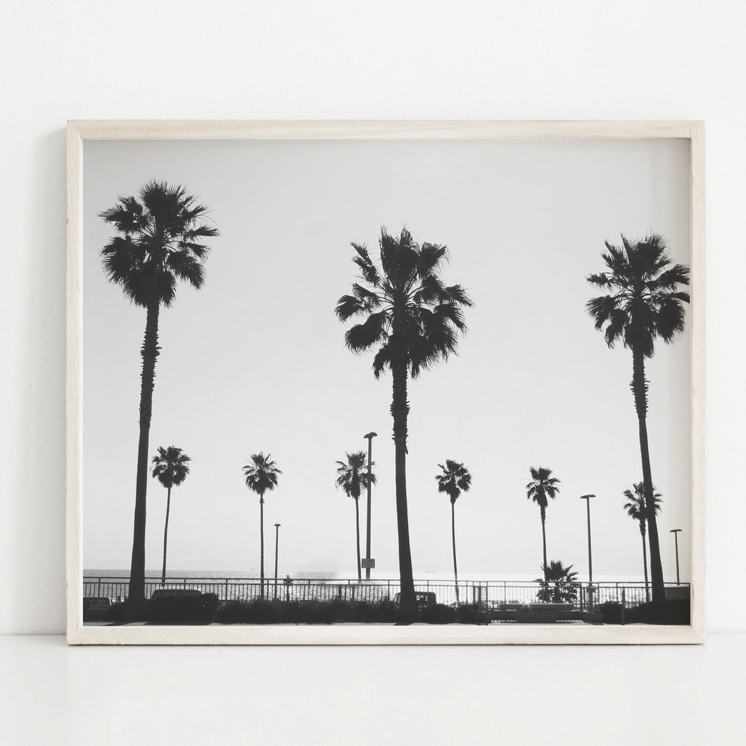 Paradise Palms- Instant Download Wall Art