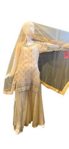 Mild Golden Chiffon With Net Dupatta And Sequence Work
