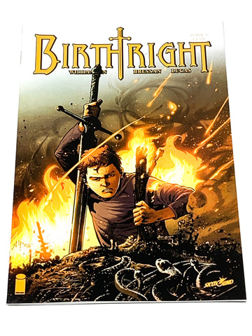 BIRTHRIGHT #5. NM CONDITION.