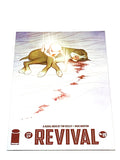 REVIVAL #19. NM CONDITION.