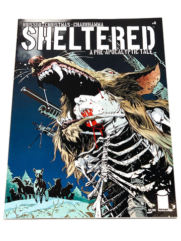 SHELTERED #4. NM CONDITION.