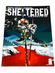 SHELTERED #6. NM CONDITION.