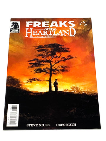 FREAKS OF THE HEARTLAND #6. NM CONDITION.