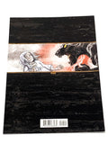 HARROW COUNTY #17. NM CONDITION.