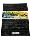 HARROW COUNTY #20. NM CONDITION.