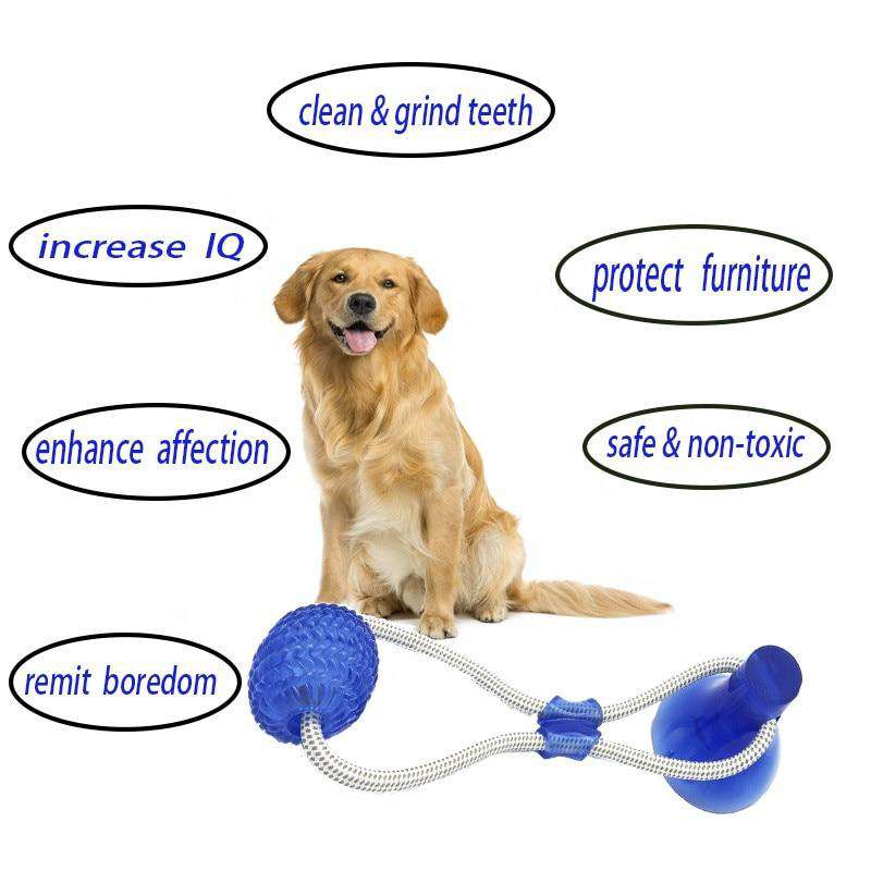 Dog Suction Cup Toy - Discounts You May Like