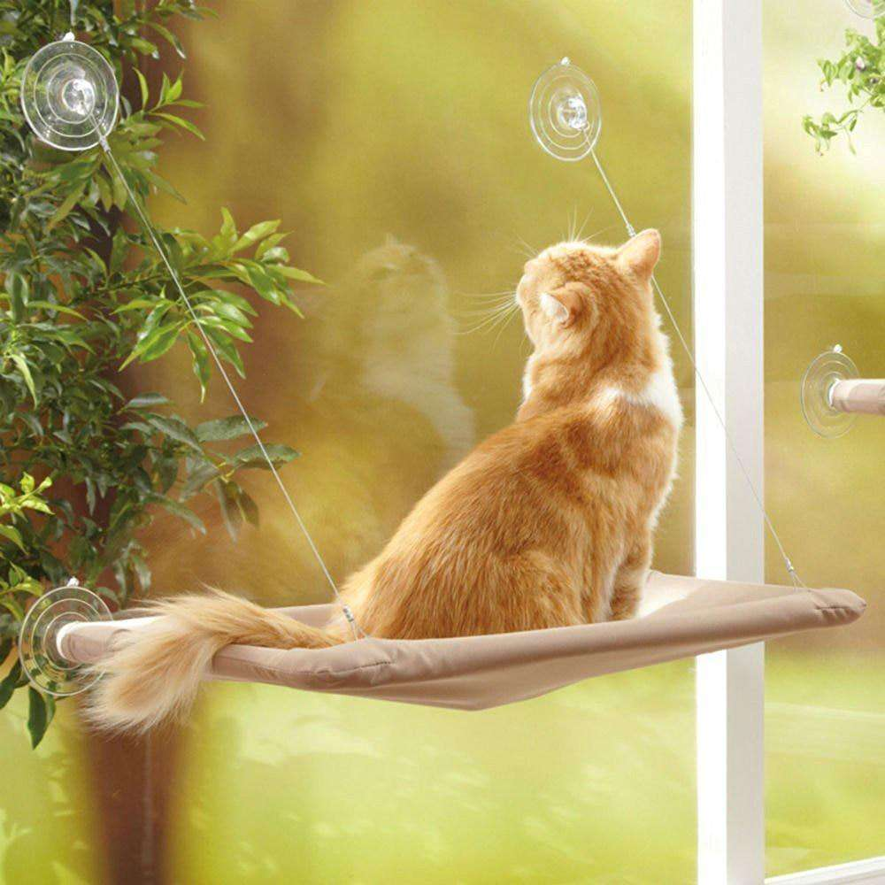 Cat Window Perch - Discounts You May Like