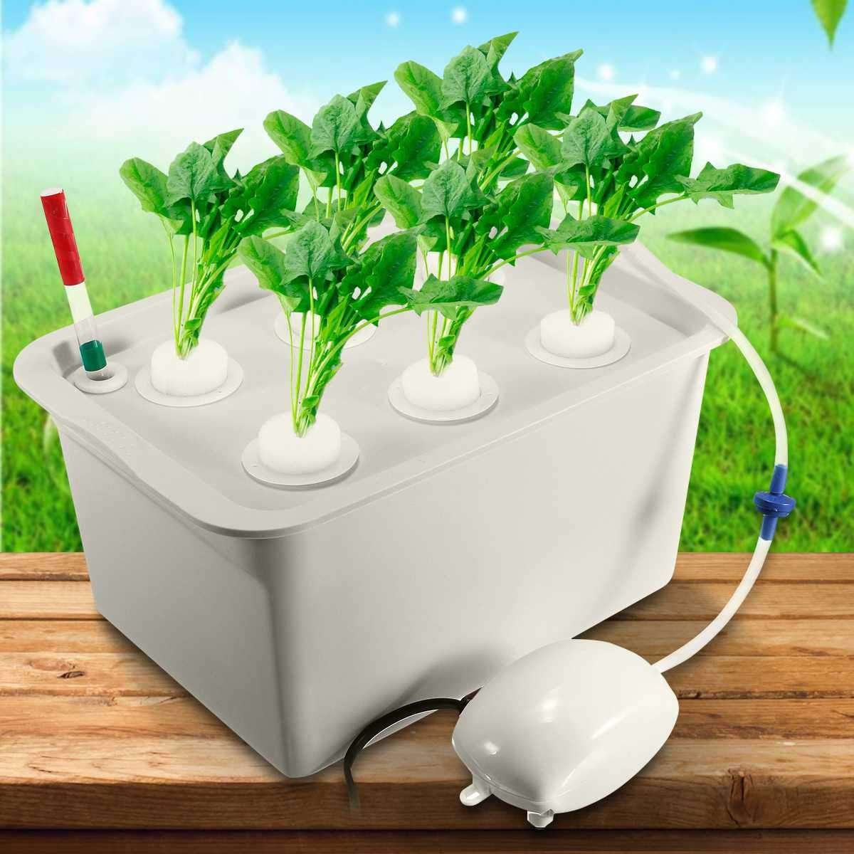 Soilless Indoor Box Planter - Discounts You May Like