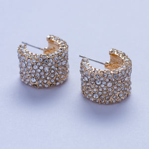 Stel Earrings