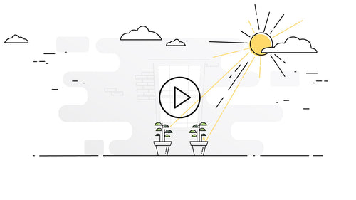 Mirasand how it works video. Plants grow faster. Plants grow healthier. More Yield