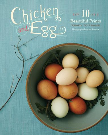Chicken and Egg: 10 Beautiful Prints