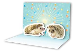 Kisses Pop-Up Notecards