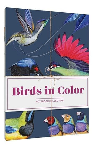 Birds in Color Notebook Collection