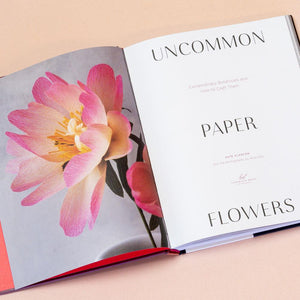 Uncommon Paper Flowers interior