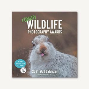 Comedy Wildlife 2021 Wall Calendar