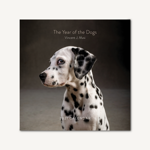 The Year of the Dogs 2021 Wall Calendar