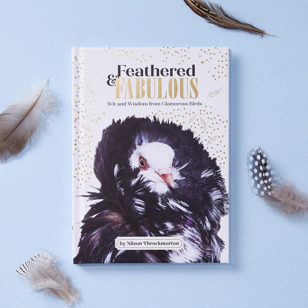 Feathered & Fabulous cover with feathers on blue background