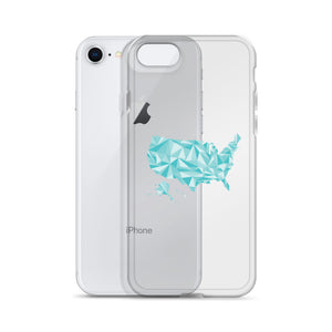 United States Winter Crystal iPhone Case
