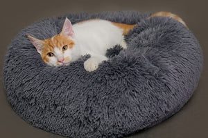 Pet Lounger Cushion