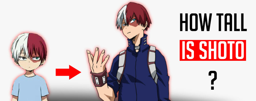 how tall is todoroki