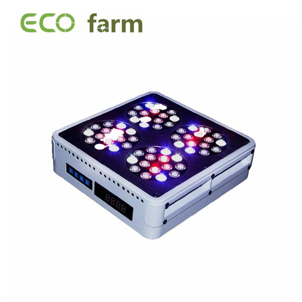 ECO Farm 120/209/278/364/430/580/644/725W COB LED Luz de Cultivo