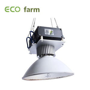 ECO Farm Kit de 150W CMH Para Plantas Interiores