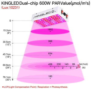 King Plus 600/1000/1200/1500/2000/3000W LED Luz de Cultivo