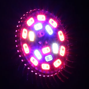La Luz De Cultivo De King-Mini 9W LED