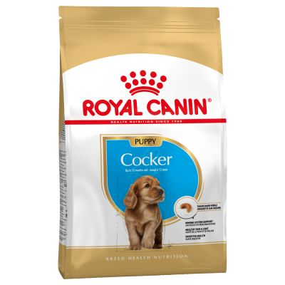 Royal Canin Cocker Puppy / Junior Perro 3 KG