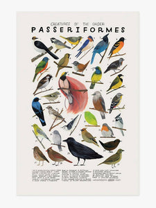 Creatures of the Order Passeriformes Art Print
