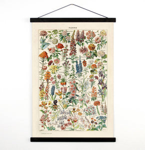 Vintage Botanical French Garden Flower Canvas Hanging