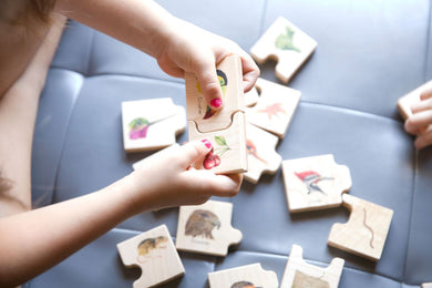 Bird Beak Puzzle - Things They Love