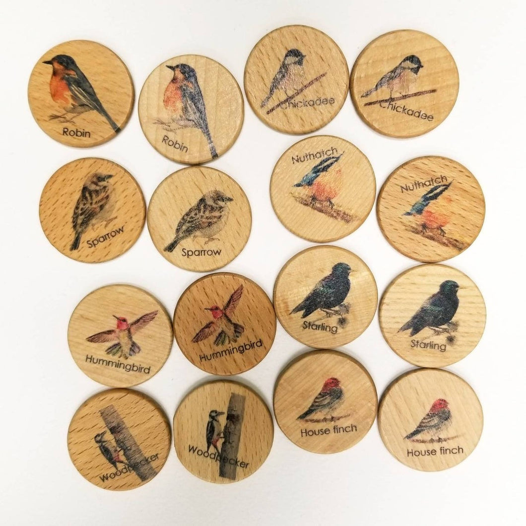 Backyard Birds Memory Game - Things They Love