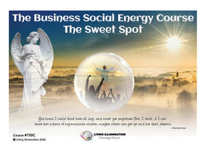 The Business Social Energy Course: The Sweet Spot (#750C)