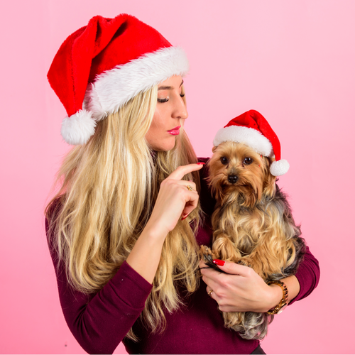 Plush Santa Hat + FREE Santa Hat for Pets! 🐾